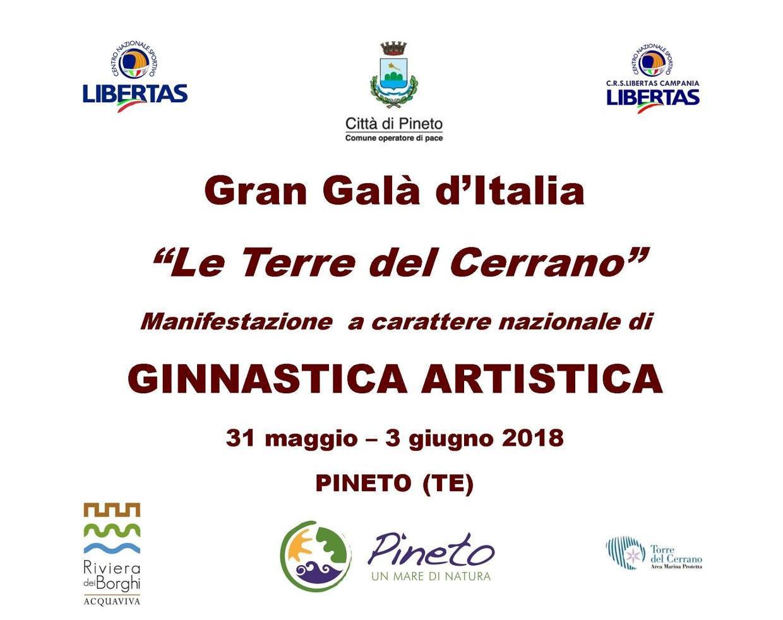GRAN GALA' D'ITALIA DI GINNASTICA ARTISTICA1